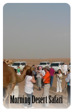 morning desert safari dubai, desert dune safari dubai, dubai desert safari, Dune Bashing, Sand Ski Dubai